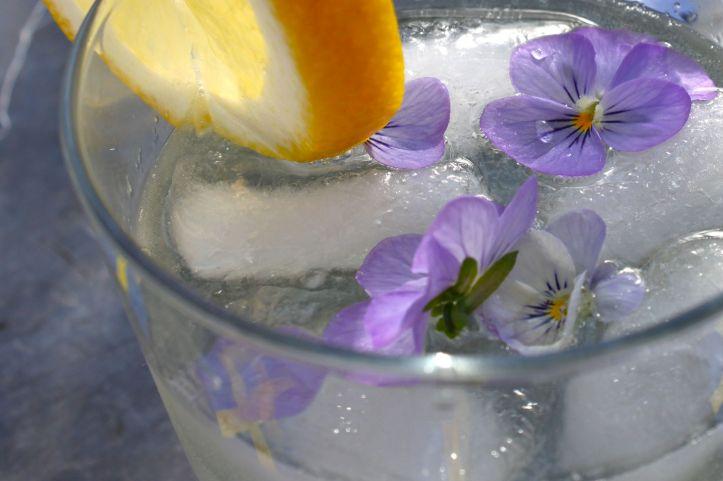 Cocktail suédois Midsommar Blues Gin Sirop Sureau Elderflower Citron 2