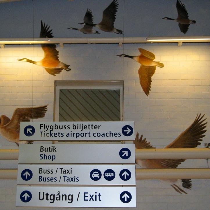 Le merveilleux voyage de Nils Holgersson a travers la Suede  1