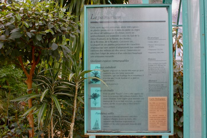 Serres d'Auteuil - Palmarium et Serre Tropicale 03