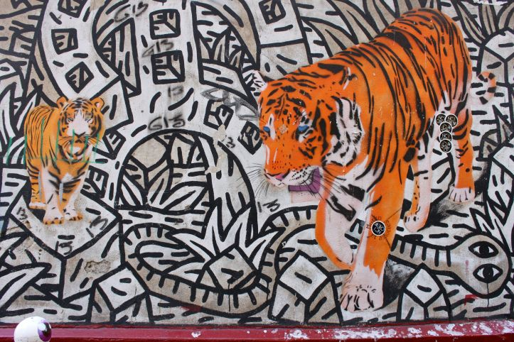 Mosko et associes - rue des Rosiers - Tigres 1
