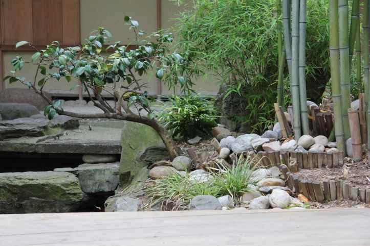 Jardin Japonais Guimet (9)