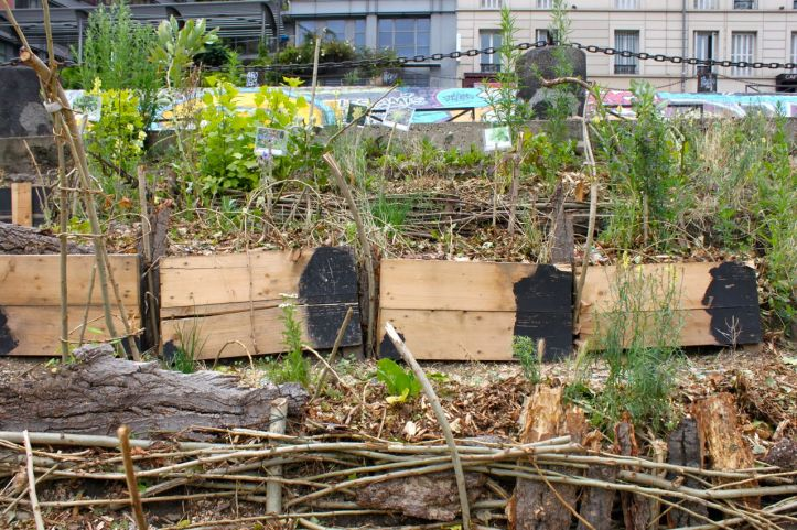 Jardin afghan quai de valmy guerrilla gardening 2