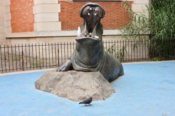 Ambiance savane avec les hippos du jardin des plantes so for Jardin animaux paris