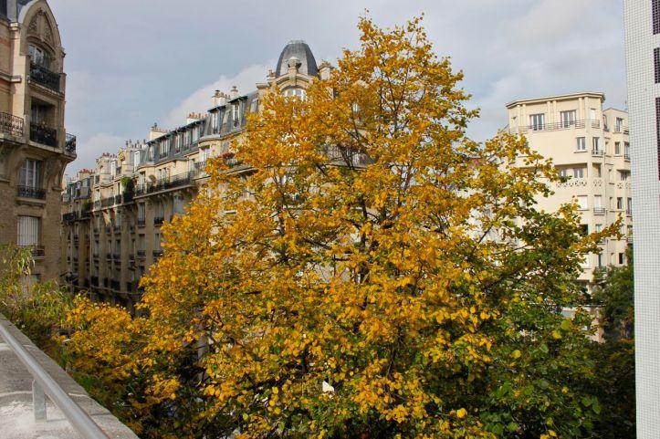 Promenade Petite Ceinture 15eme Paris 03