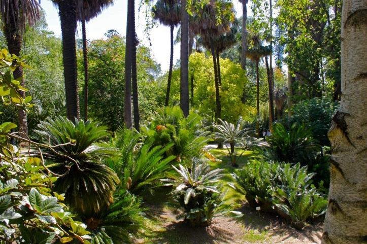 Cityguide Lisboa - Jardim Botanico 1