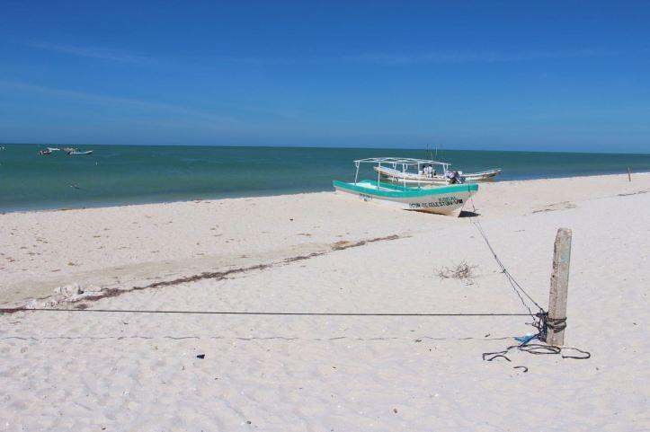 Carnet de voyage Yucatan 103