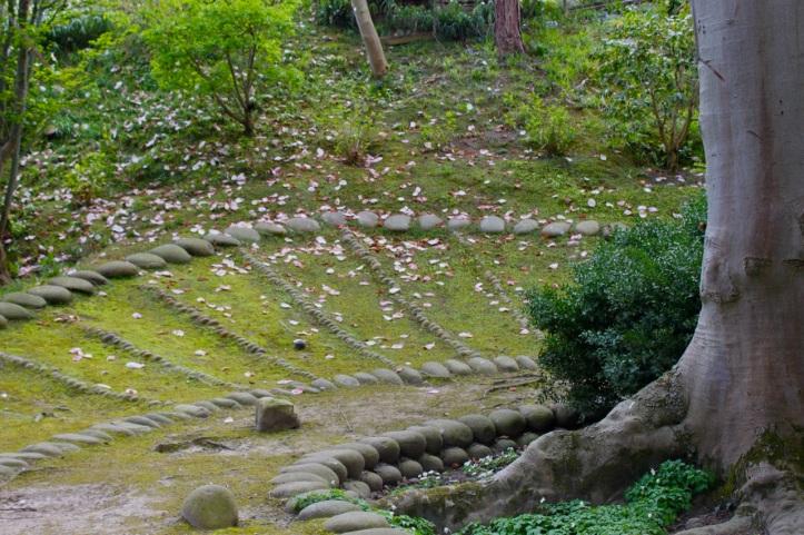 Albert Kahn - Jardin japonais contemporain 1