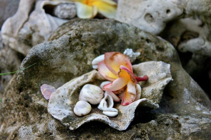 Carnet de voyage - offrandes de Bali 1