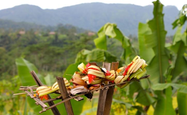Carnet de voyage - offrandes de Bali 11