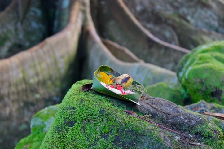 Carnet de voyage - offrandes de Bali 27