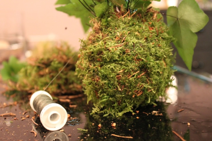 Kokedama japonais Girls and Roses 11
