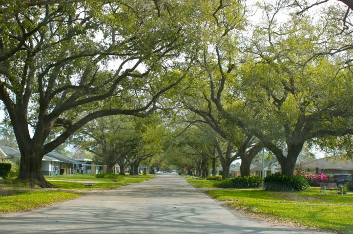 Houma Louisiana1