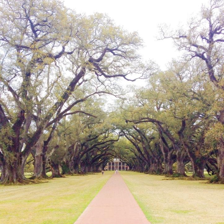 Oak Alley Plantation Louisiana1