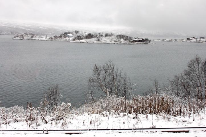 Carnet de voyage - Norvege - Bergen Railway - 1