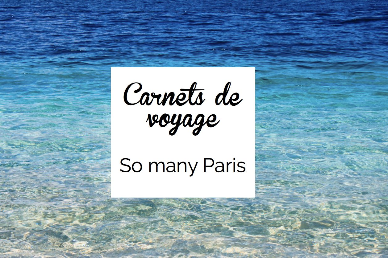 Une nouvelle rubrique consacr e aux voyages qui nous for Carnet de voyage paris