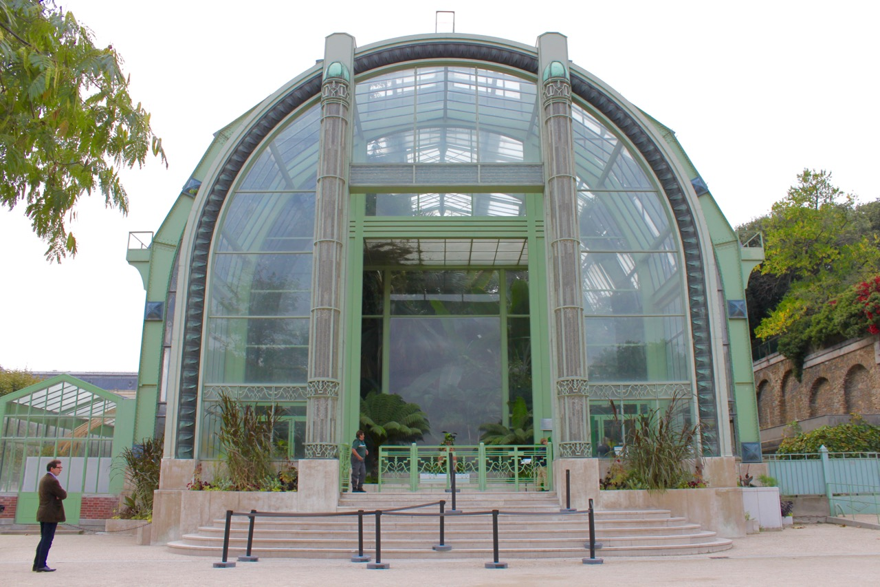 la nouvelle cal donie dans les grandes serres du jardin des plantes so many paris. Black Bedroom Furniture Sets. Home Design Ideas