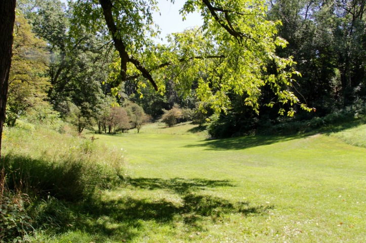 Arboretum - 2.jpg