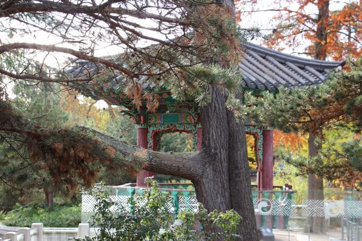 Jardin coréen jardin d'acclimatation - 14