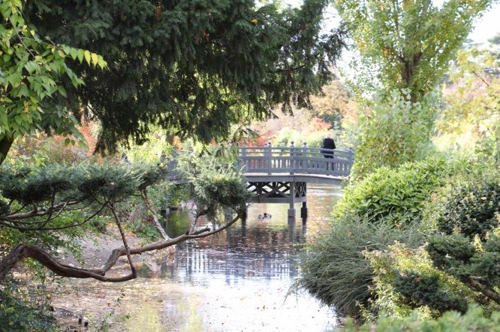 Jardin coréen jardin d'acclimatation - 16