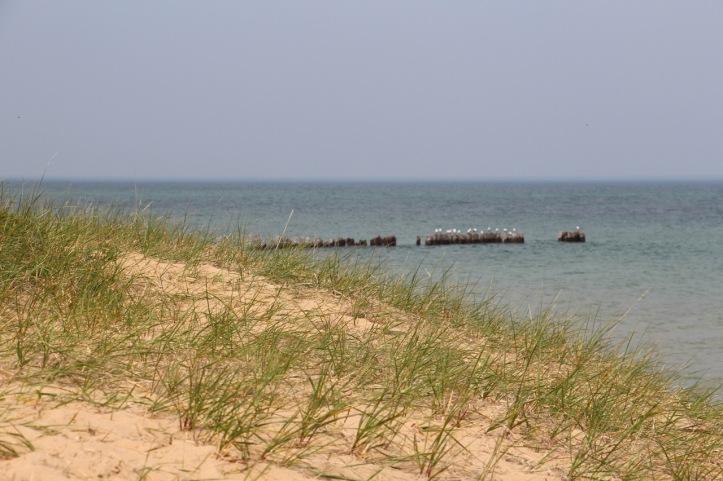 Whitefish plage - 1