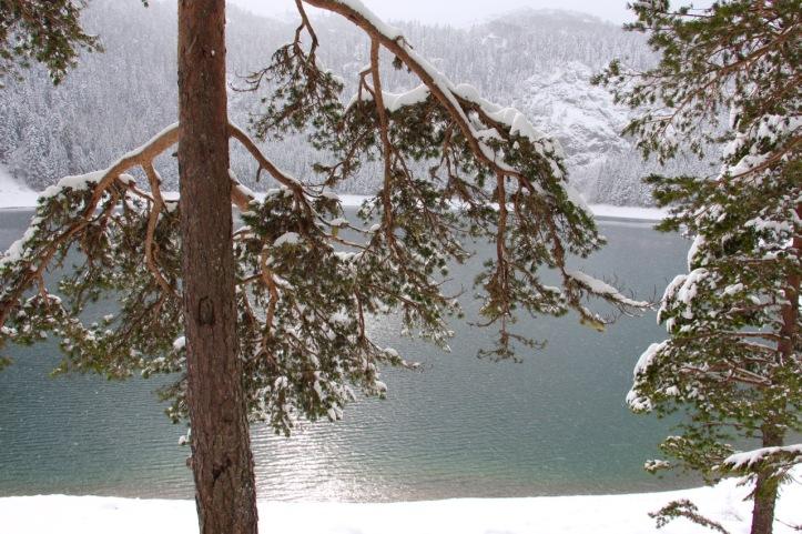 Lac noir - 2